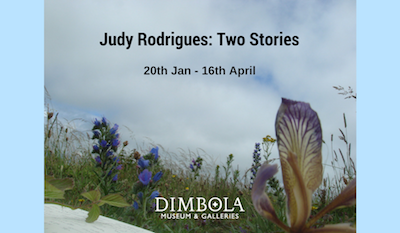 judy-rodrigues-two-stories
